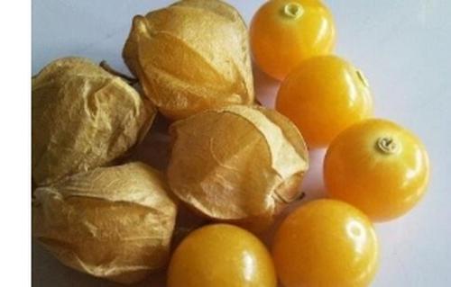 酸浆果怎么吃 酸浆果的功效与作用