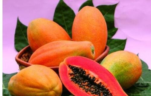 木瓜的功效与作用 木瓜的食用方法
