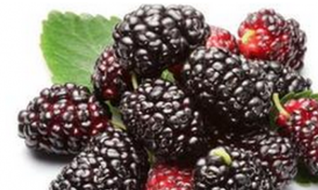痛经吃什么水果好 哪些水果能治痛经