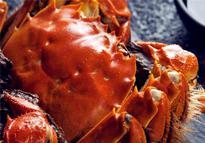 2019大闸蟹价格多少钱一斤?应该怎么吃?附详细做法
