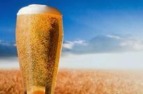 啤酒的分类