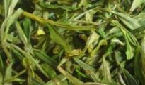 霍山黄芽如何保存 霍山黄芽保存方法