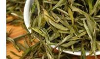 金寨雀舌的功效与作用 金寨雀舌属于什么茶