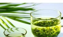 夏天喝绿茶的功效与作用