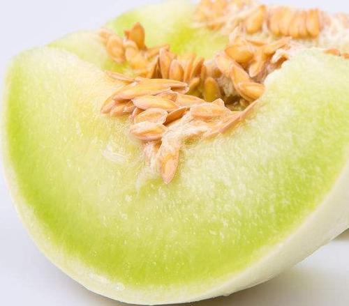 香瓜和哈密瓜2