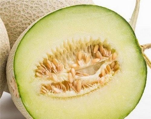 香瓜和哈密瓜5